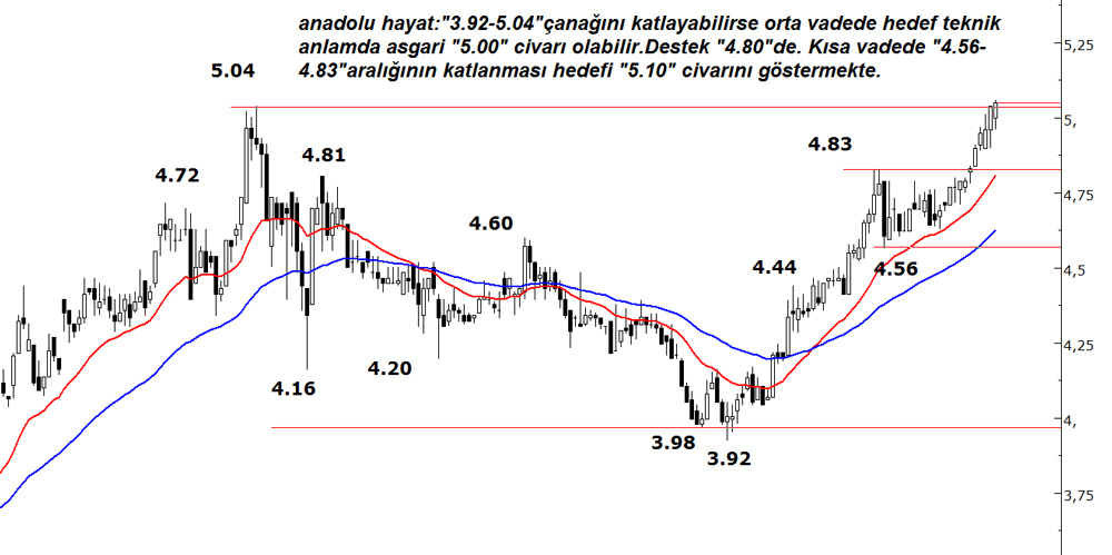 ANADOLU-HAYAT-14