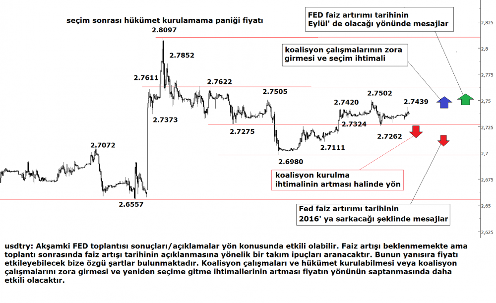 dolar-tl-17062015