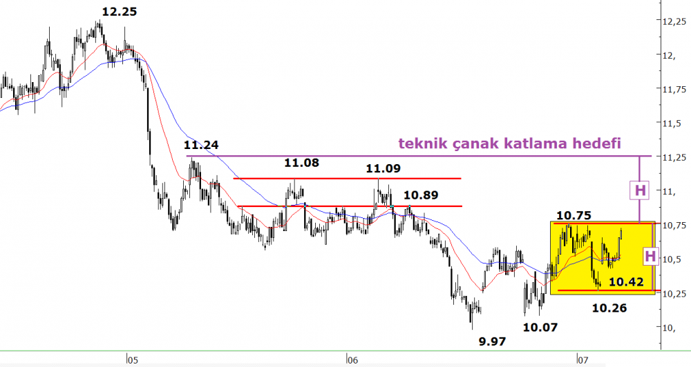 1307tcell